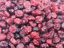 Cranberry (Arandanos)